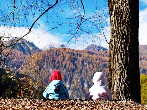 Gratis lagerfoto af barn, bjerg, børn, Dreng