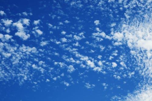 คลังภาพถ่ายฟรี ของ ขาว, ท้องฟ้า, ท้องฟ้าสีคราม, สีน้ำเงิน