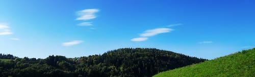 คลังภาพถ่ายฟรี ของ ขาว, ท้องฟ้า, ท้องฟ้าสีคราม, ทุ่งหญ้า