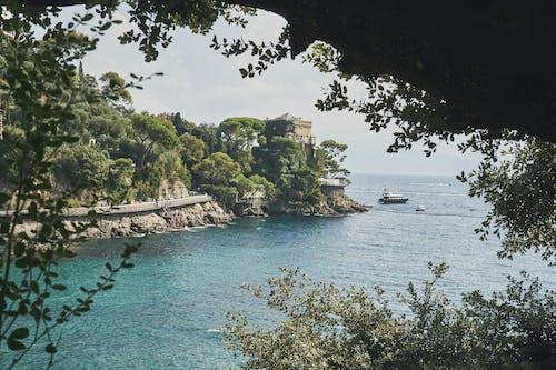 Immagine gratuita di acqua, acqua azzurra, alberi, architettura