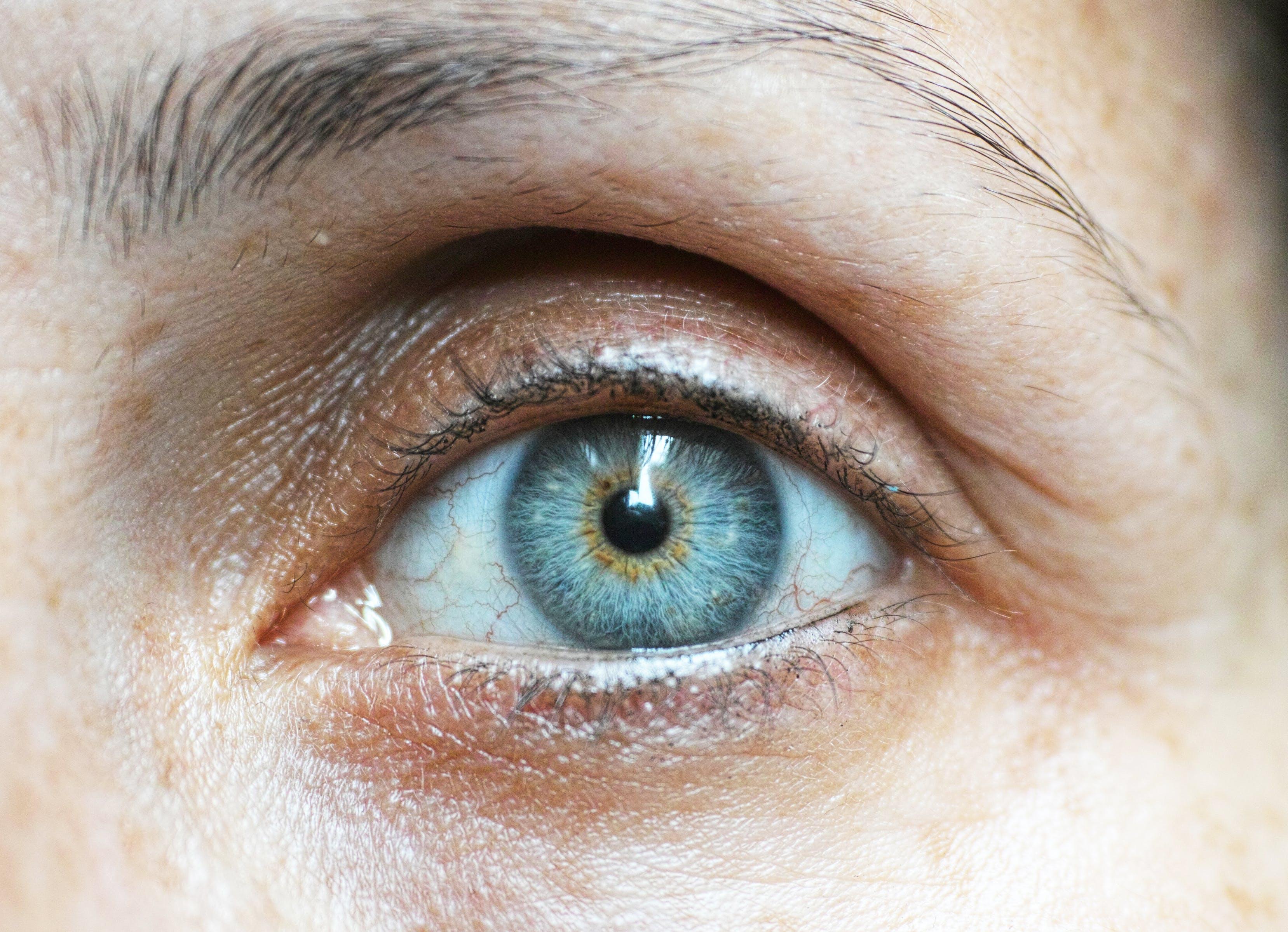 Immagine gratuita di alla ricerca, bulbo oculare, capelli, ciglia