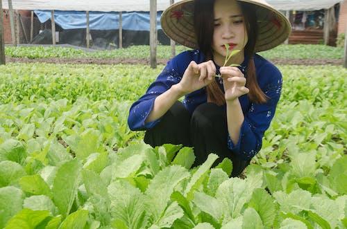 Darmowe zdjęcie z galerii z azjatycka dziewczyna, rolnik, smutne oczy, smutny