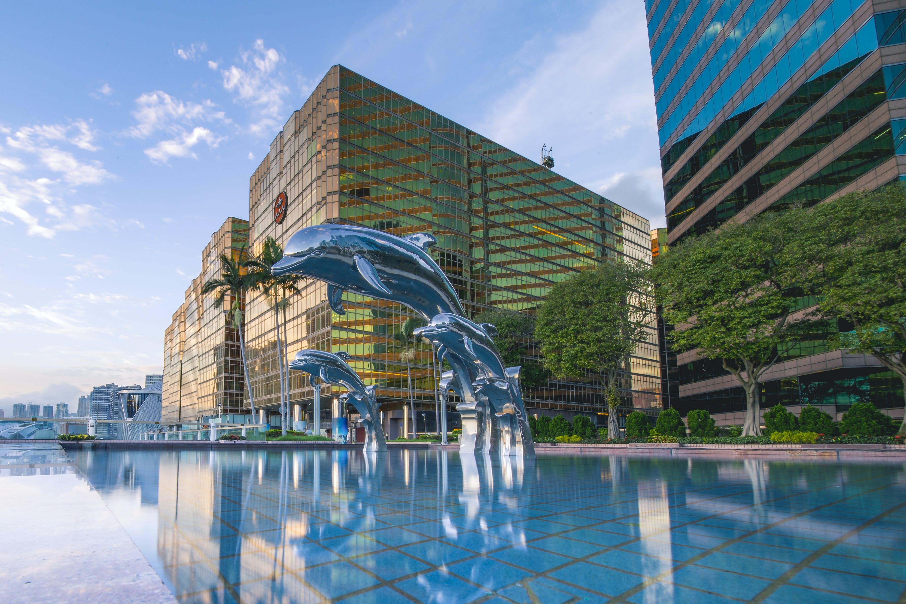 Kostenloses Stock Foto zu architektur, badeort, bäume, delfine