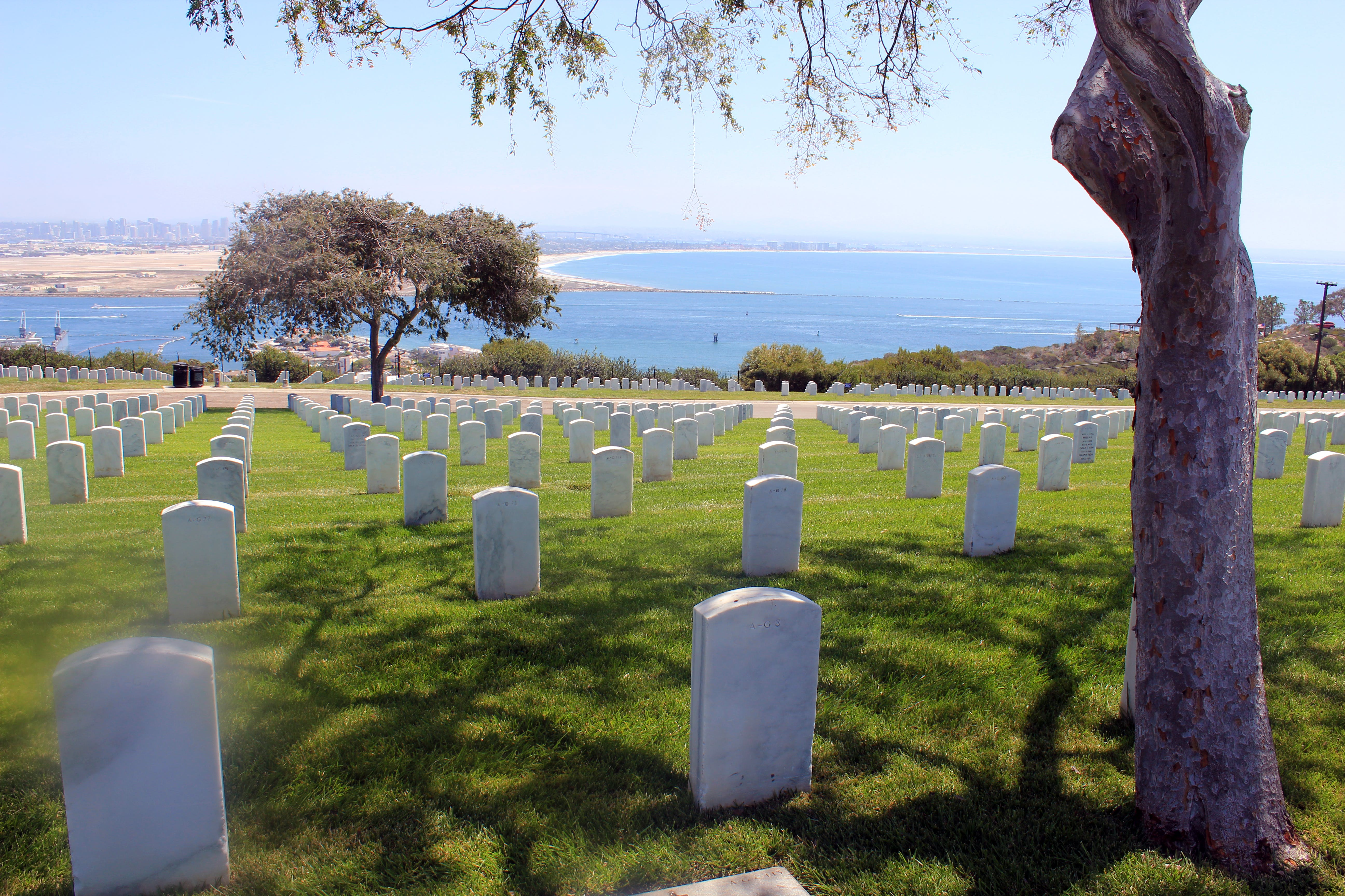 Free stock photo of military, cemetery