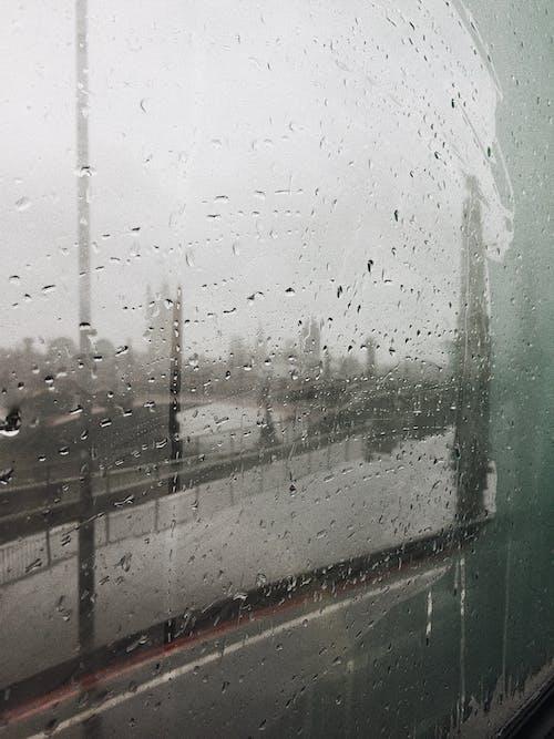 Fotobanka sbezplatnými fotkami na tému dážď, mokrý, vlhký