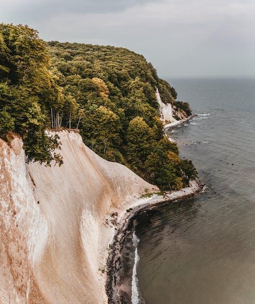 Immagine gratuita di acqua, alberi, cielo, costa della scogliera