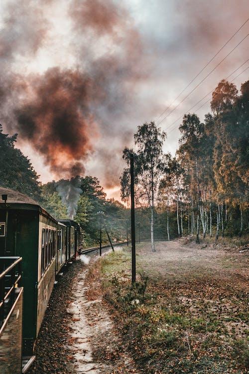 Безкоштовне стокове фото на тему «Денне світло, дерева, залізниця, Захід сонця»
