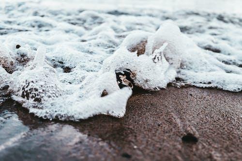 冰, 天性, 岸邊, 景觀 的 免费素材照片