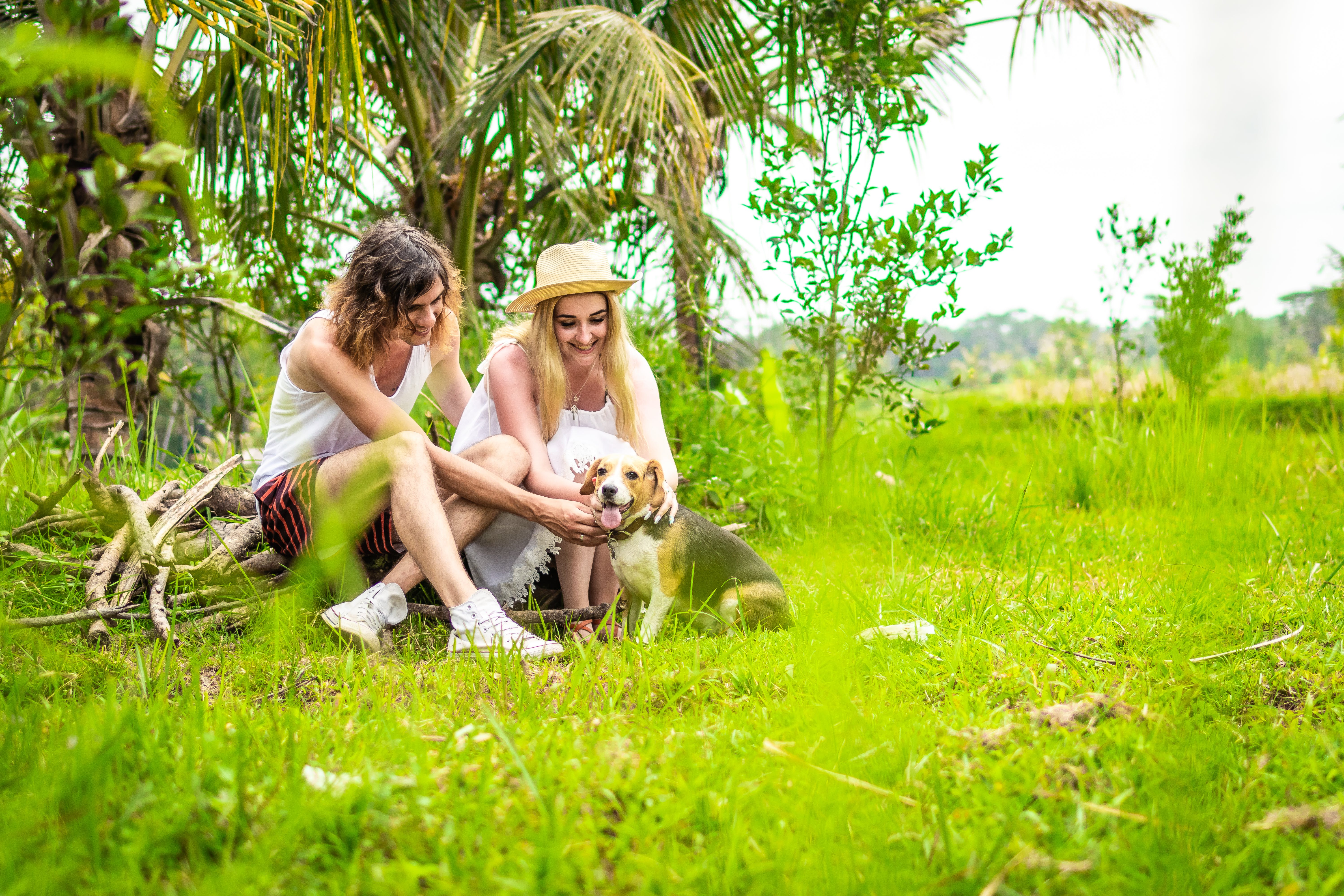 Man and Woman Sitting on Twigs Petting Beagle on Grass Area
