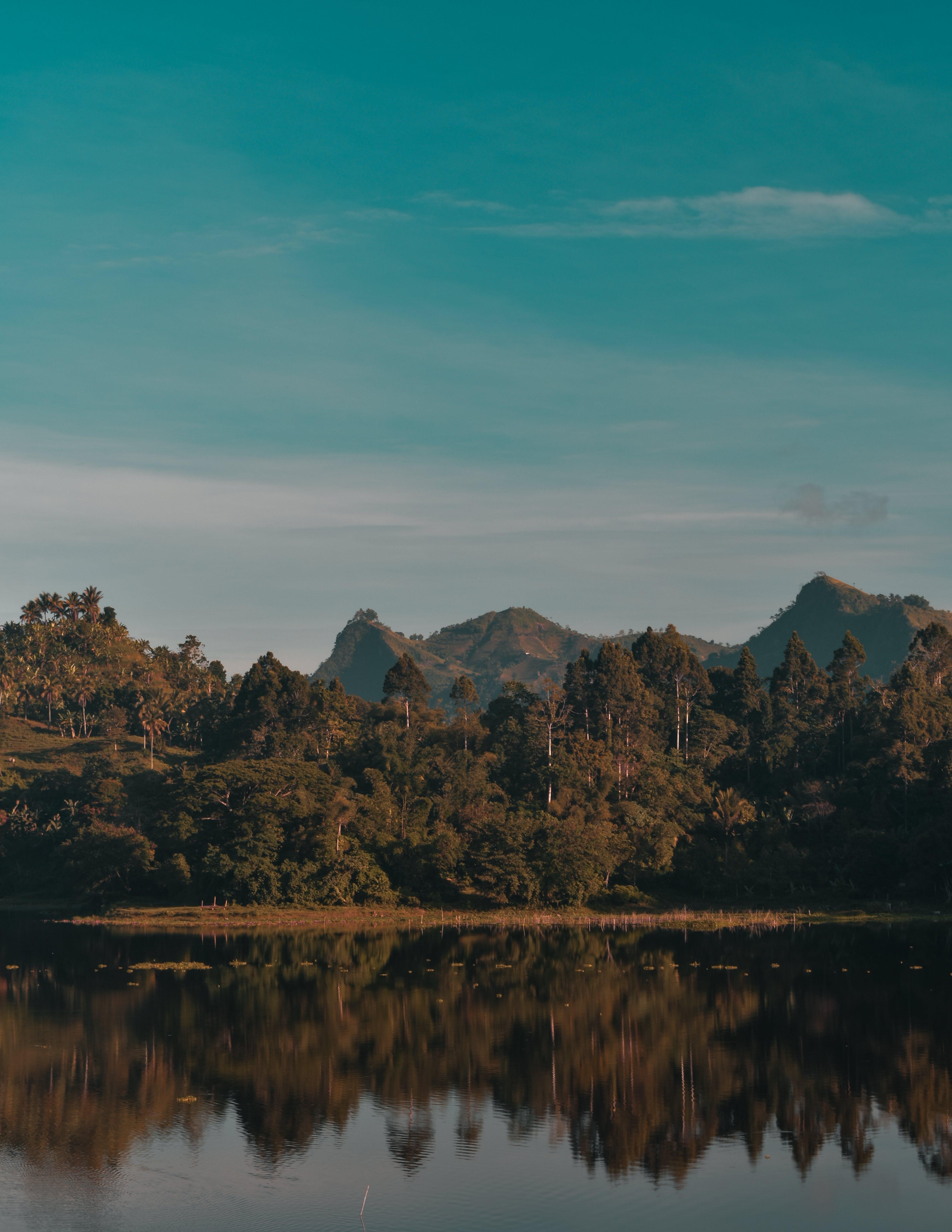 山岳, 日没, 木, 水の無料の写真素材