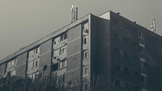 Free stock photo of black-and-white, building, architecture, grain