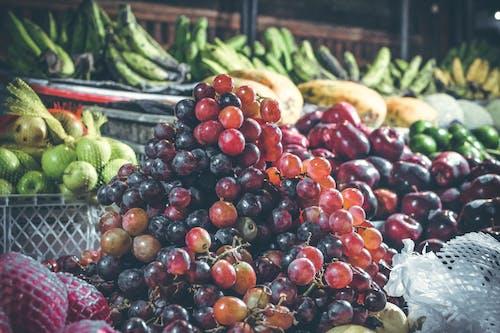Foto stok gratis anggur, apel, baris, beri