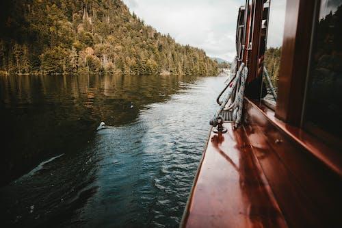 deniz aracı, kã¶nigssee gölü, orman, su kütlesi içeren Ücretsiz stok fotoğraf