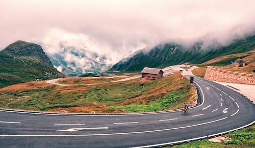 Foto profissional grátis de asfalto, curva, estrada, floresta