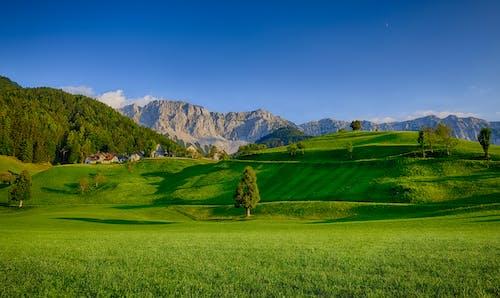 Fotobanka sbezplatnými fotkami na tému denné svetlo, exteriéry, hory, hracie pole