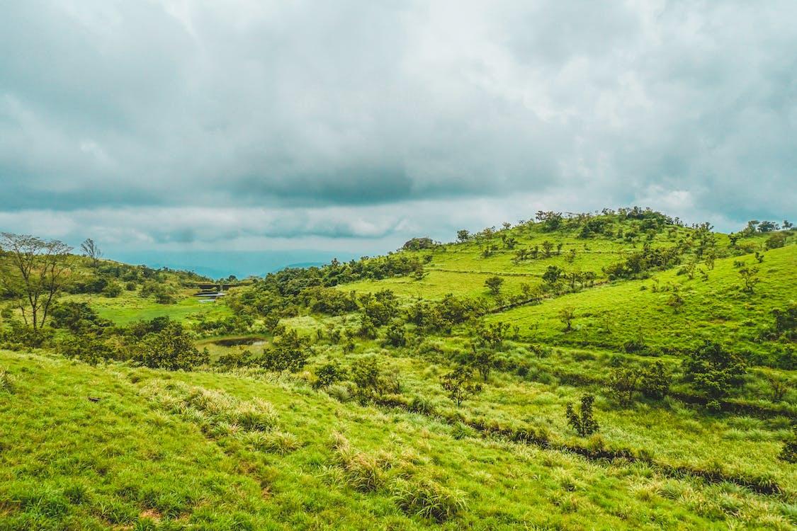india, montagne, paesaggio