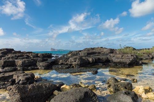 Foto d'estoc gratuïta de capvespre, cel, d7200, mar