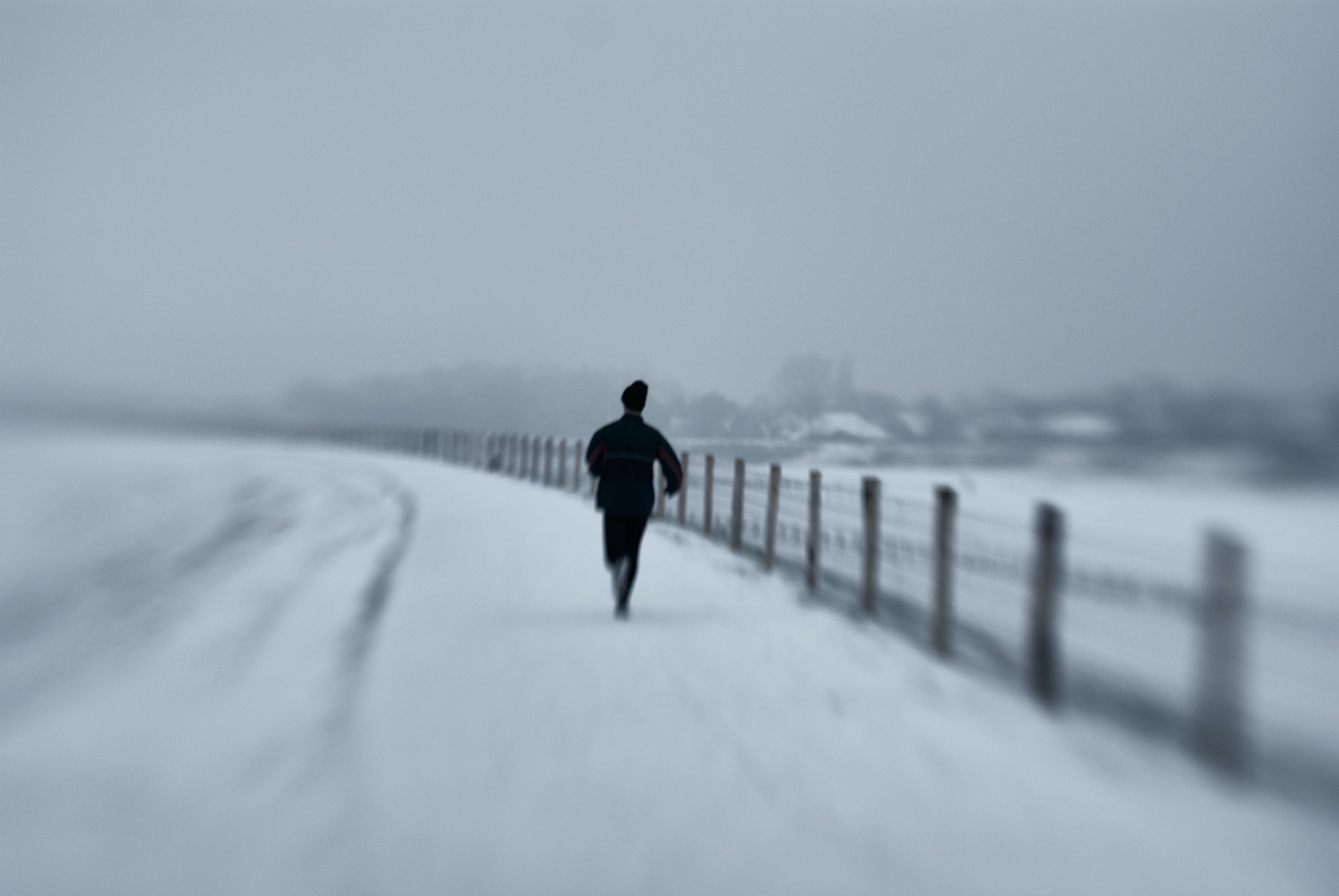 Free stock photo of black and white, sureal, winter, winter wonderland