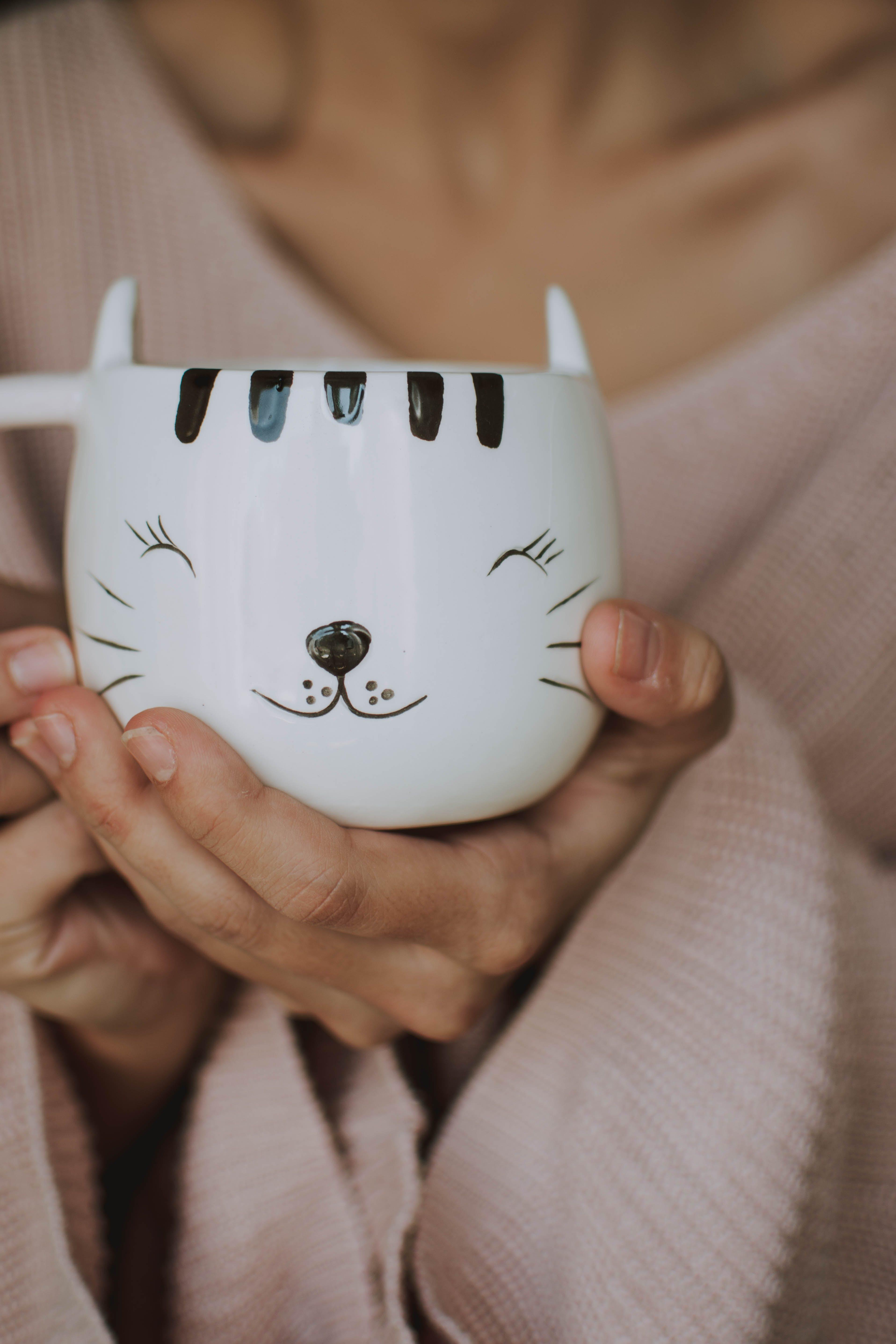 Δωρεάν στοκ φωτογραφιών με άνθρωπος, αντικείμενο, Γάτα, γκρο πλαν