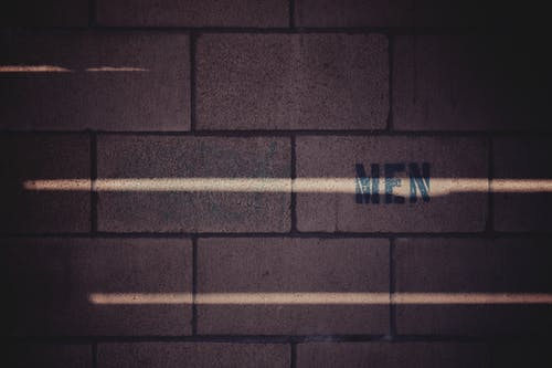 Foto profissional grátis de estrutura, ladrilhos, luz do sol, muro