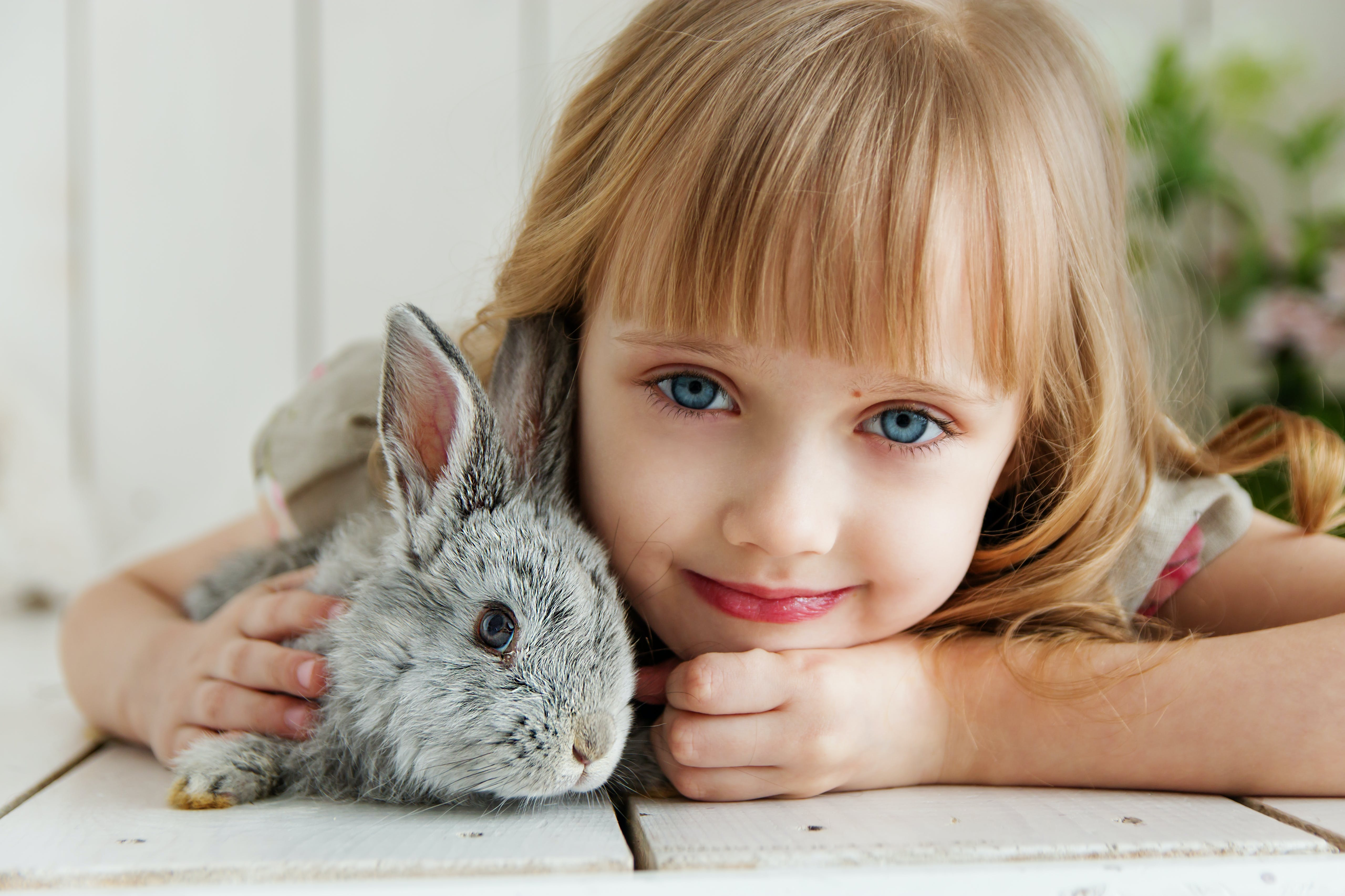 Girl Lying on White Surface Petting Gray Rabbit