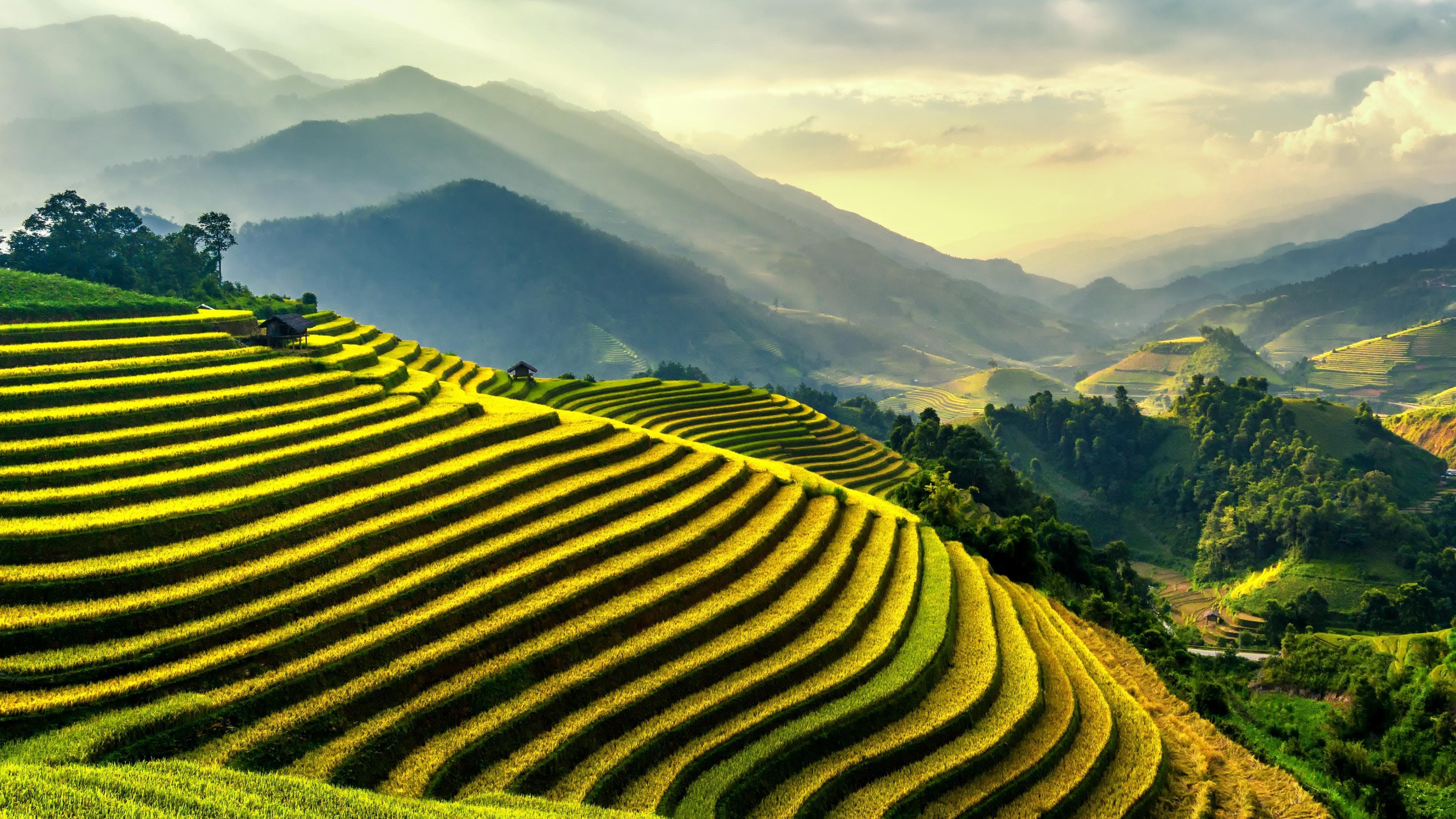 αγρόκτημα, ανάπτυξη, βουνά