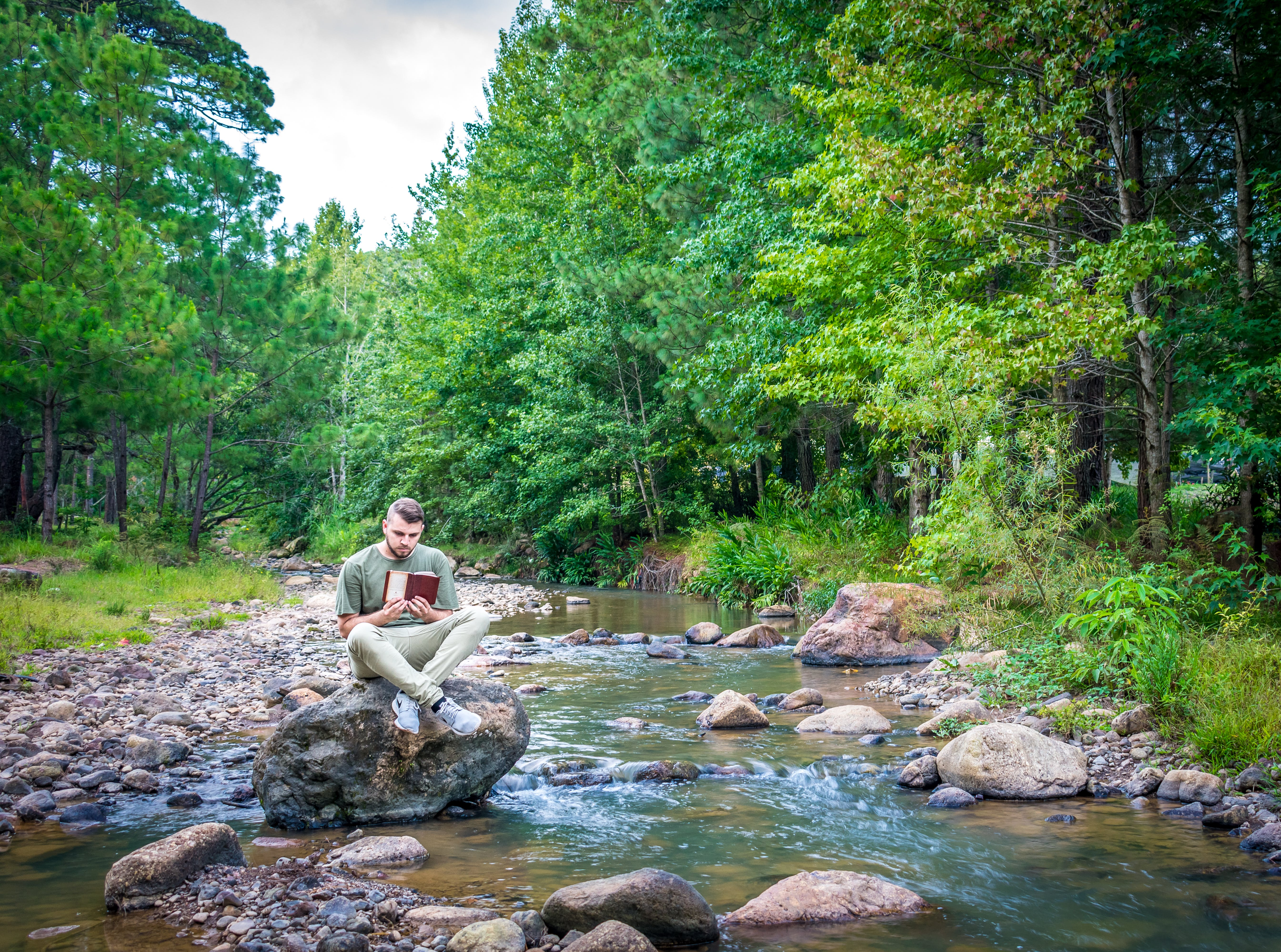 Man Sitting on Brown Stone Near Green Leafed Trees