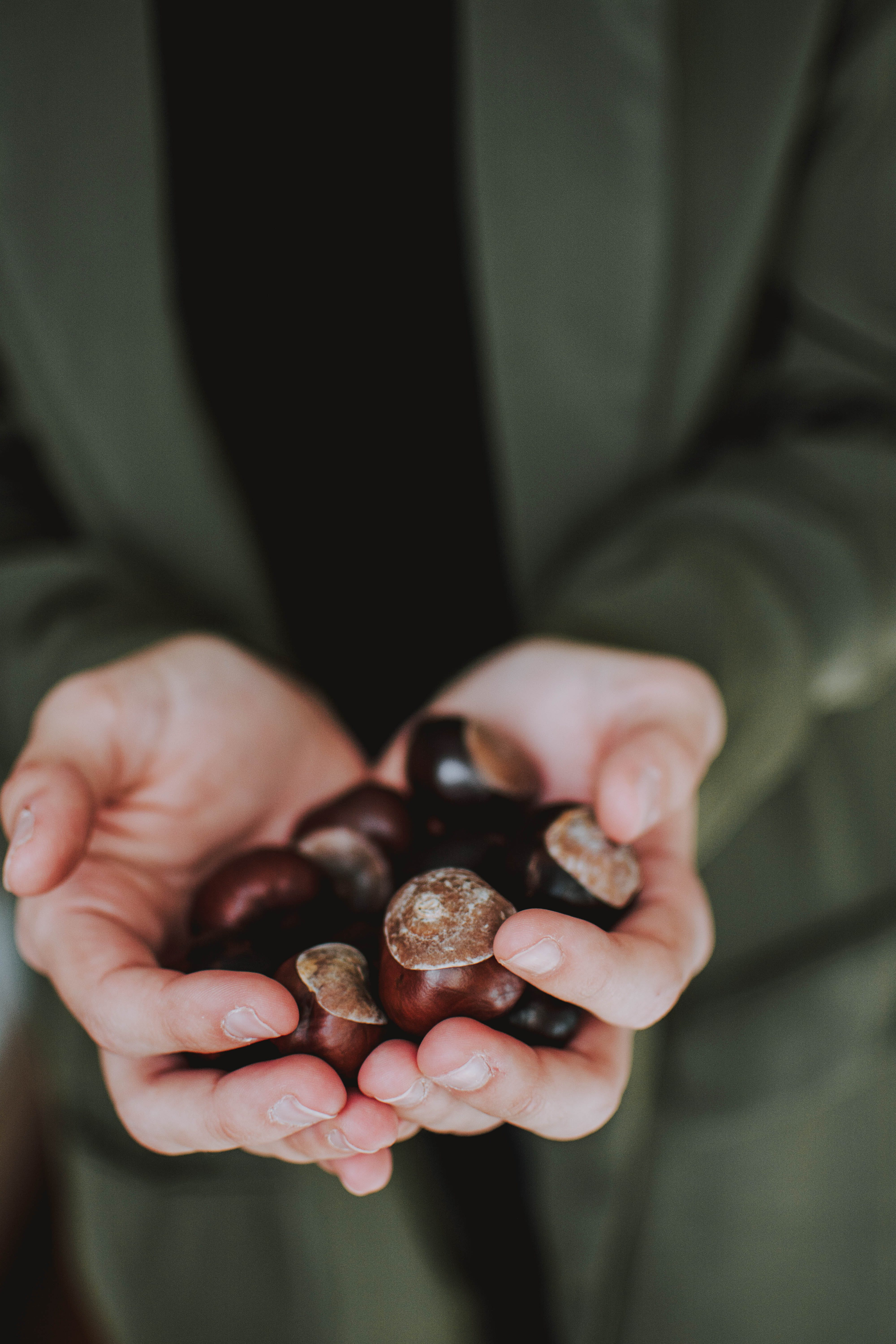 Photo of Person Holding Chestnuts
