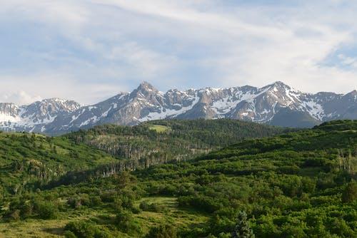 Δωρεάν στοκ φωτογραφιών με βουνό, γραφικός, δασικός, δέντρα