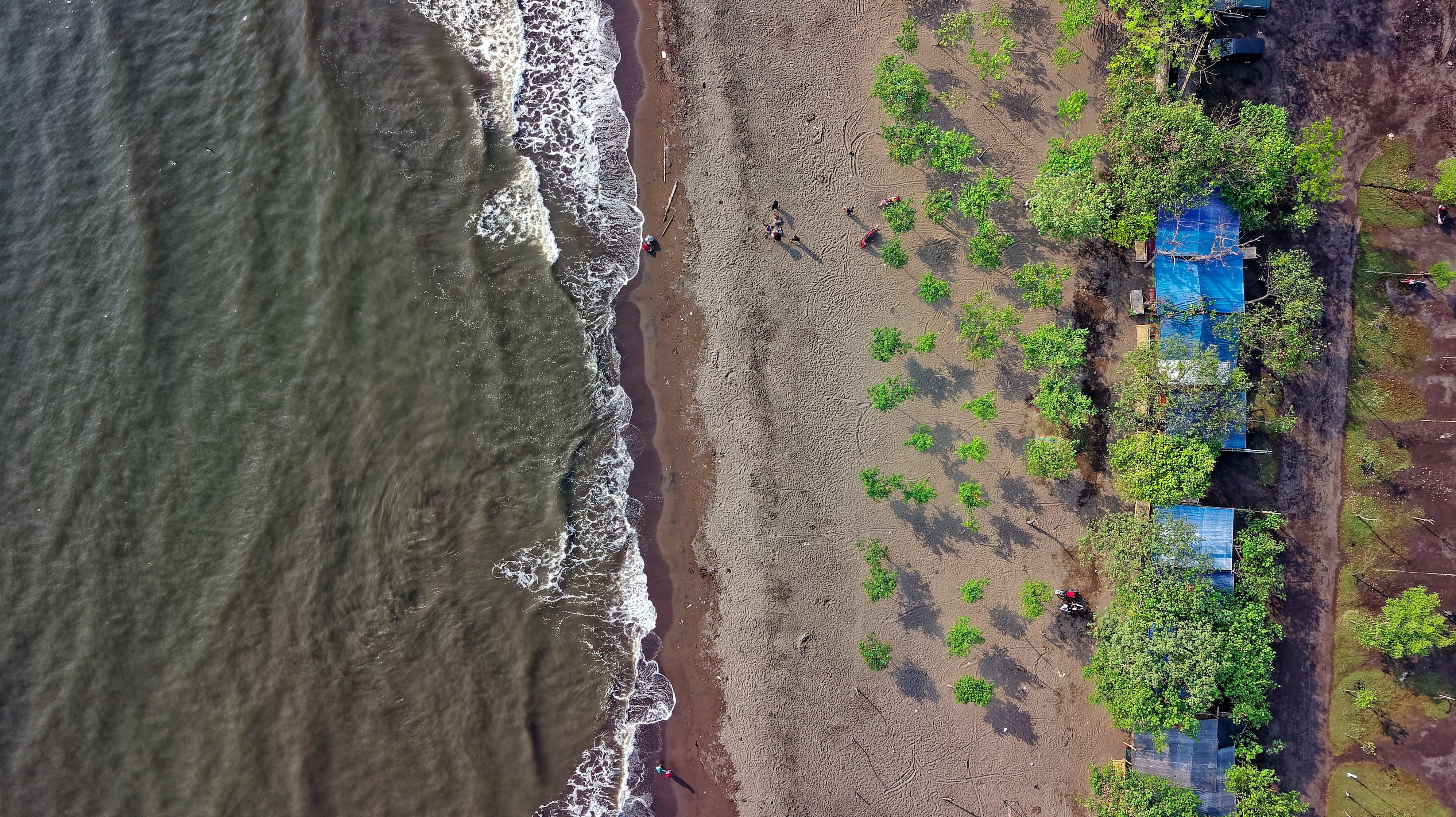 Bird's Eye View Photography of Ocean Waves