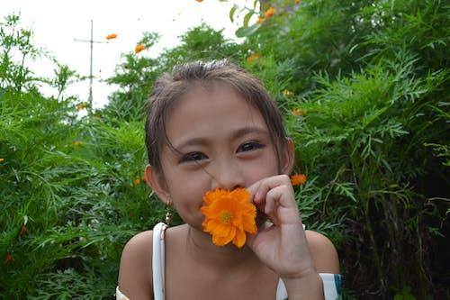 Základová fotografie zdarma na téma důlek, květinářka