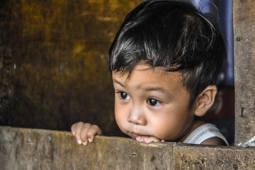 Základová fotografie zdarma na téma roztomilý chlapec, skryté tváře
