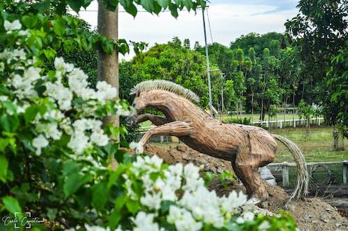 Základová fotografie zdarma na téma farma, socha, socha koně, zelené pozadí