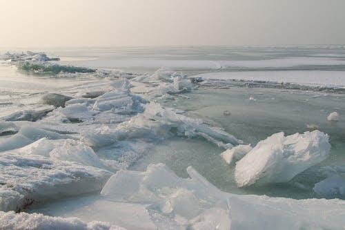Photos gratuites de froid, gel, glace, hiver