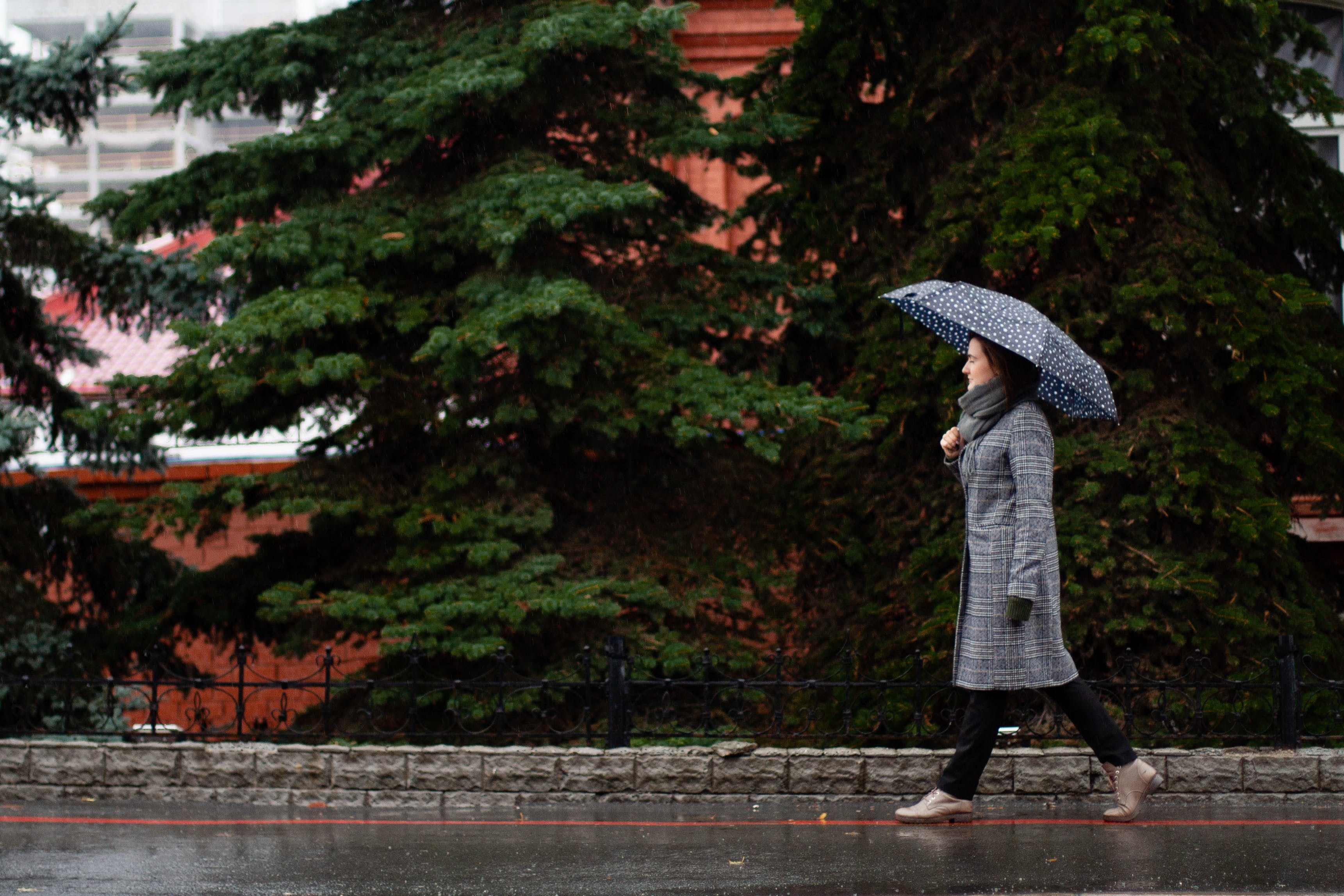 Woman Using Umbrella While Walking