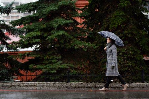 Wanita Menggunakan Payung Saat Berjalan