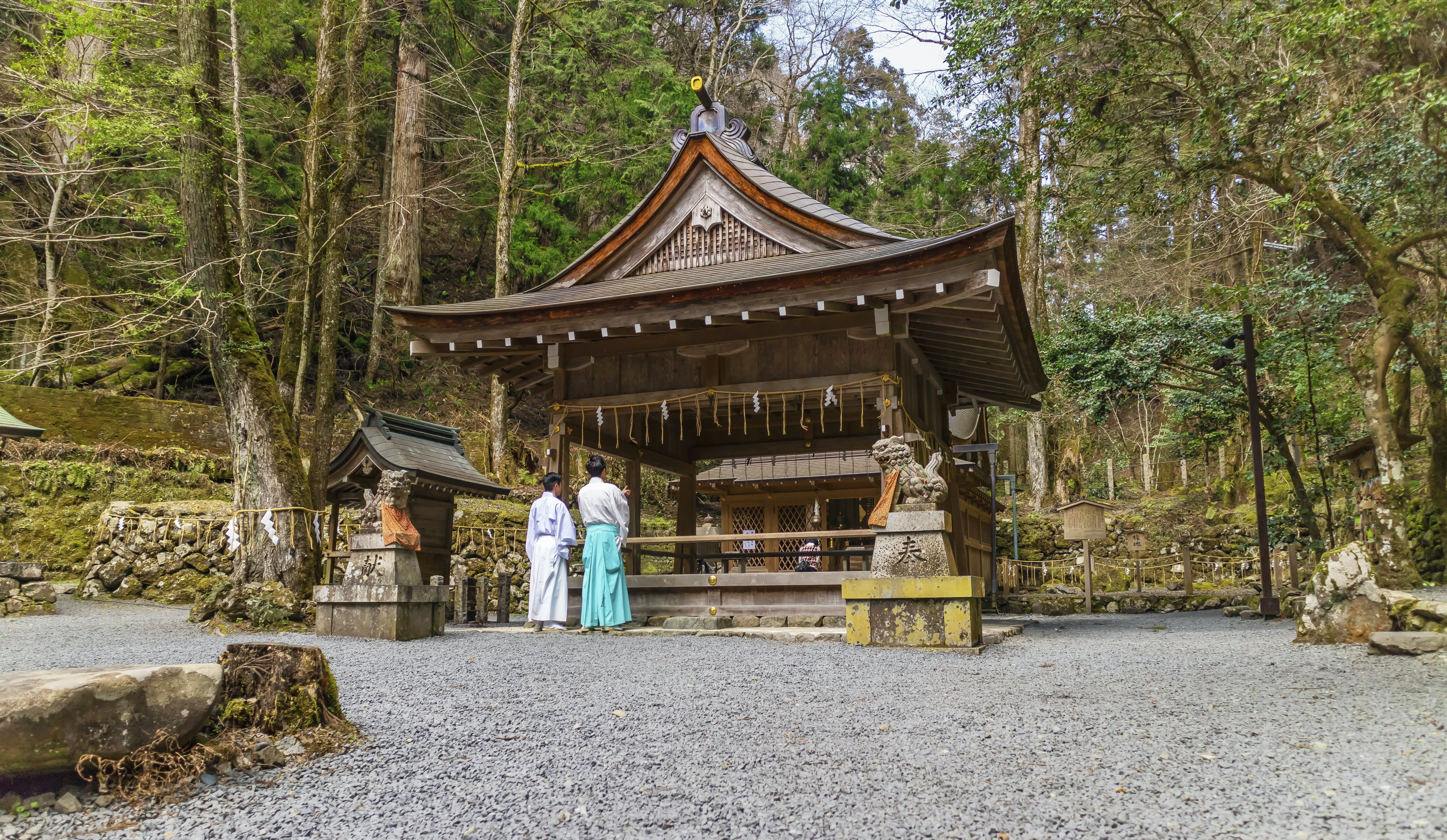 Free stock photo of culture, forest, japan, japanese culture