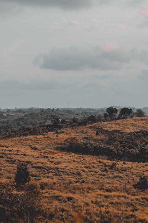 Foto stok gratis alam, awan, geologi, gersang