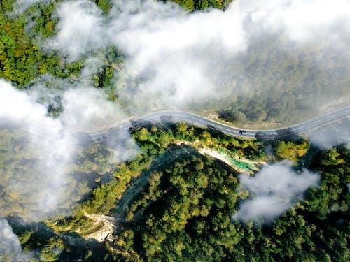 Bird's Eye View of Winding Road