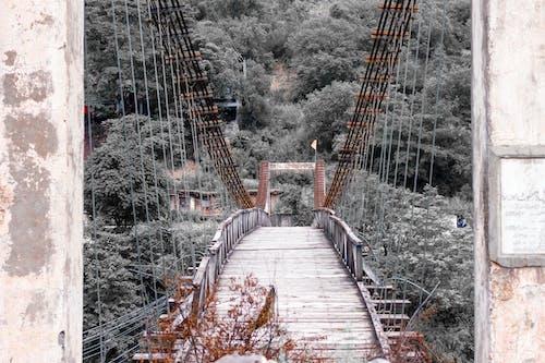 吊橋, 拱橋, 橋 的 免費圖庫相片