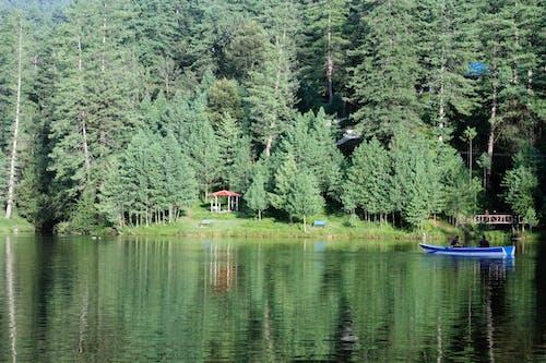 划船, 大自然, 自然美 的 免費圖庫相片