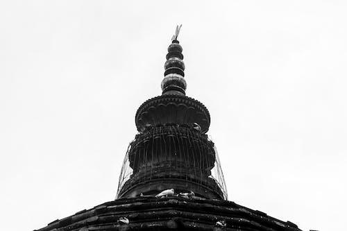 Gratis lagerfoto af Tempel