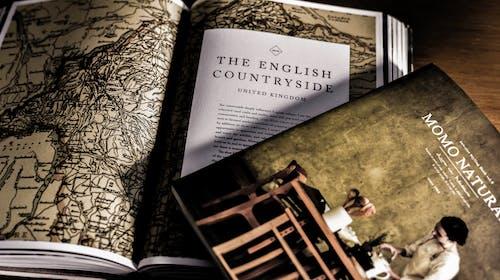 vlpkld在线少儿英语怎么样?vlpkld在线少儿英语好不好?