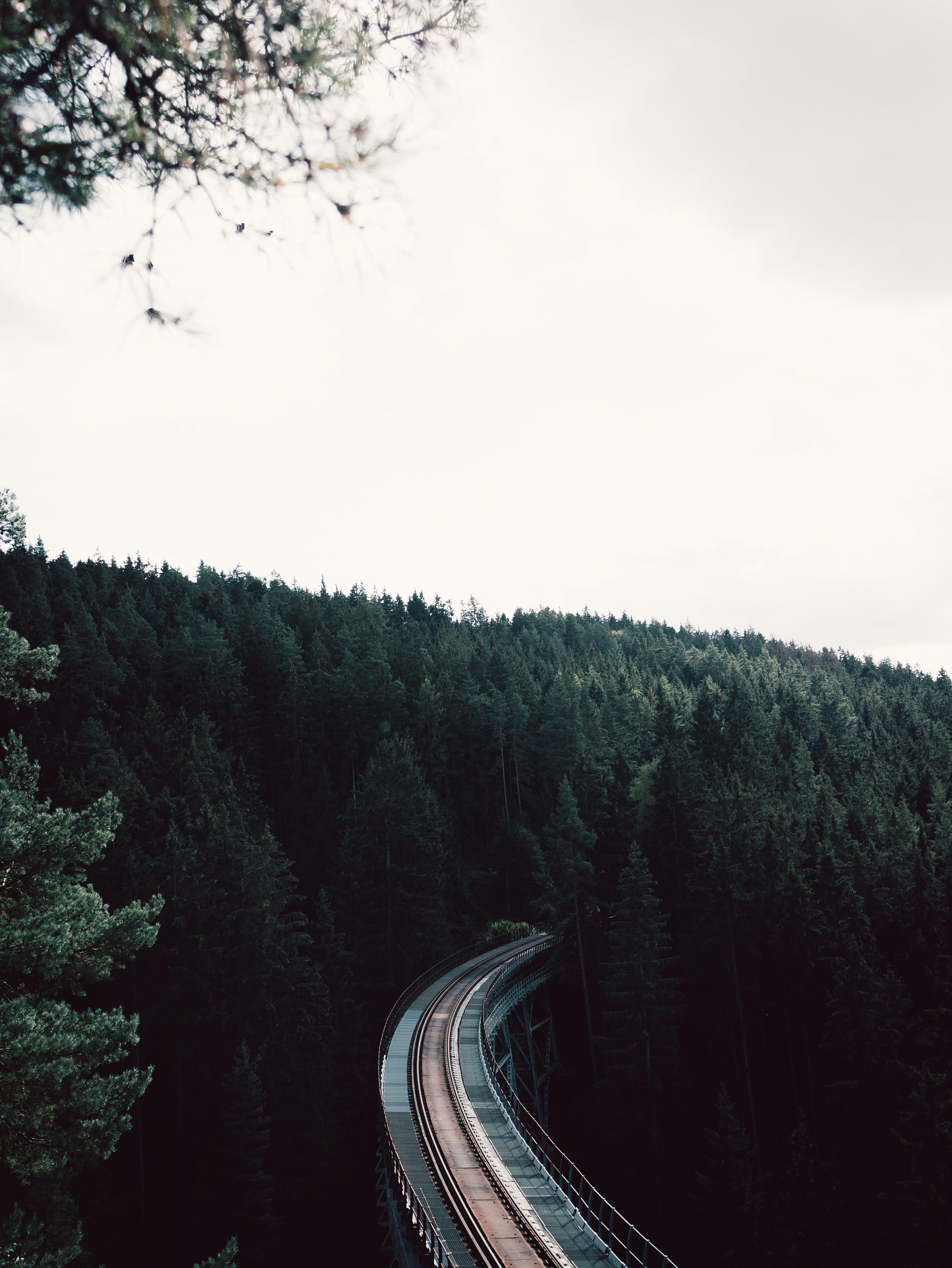 Kostenloses Stock Foto zu bäume, brücke, eisenbahn, luftschuß