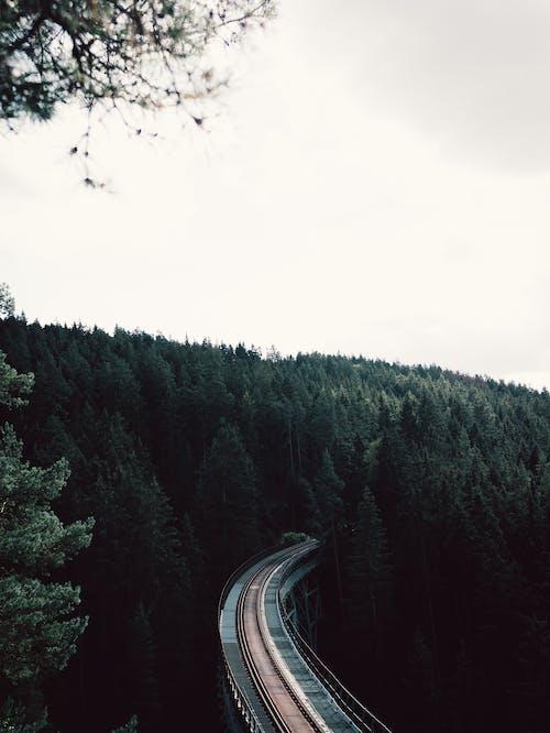 Gratis lagerfoto af bro, fra oven, fugleperspektiv, jernbane