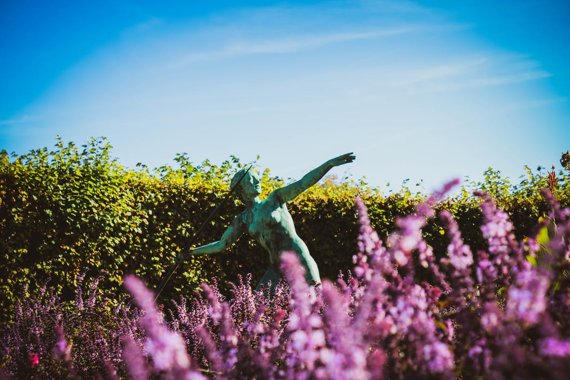 Javelin Statue in a Flower Fields