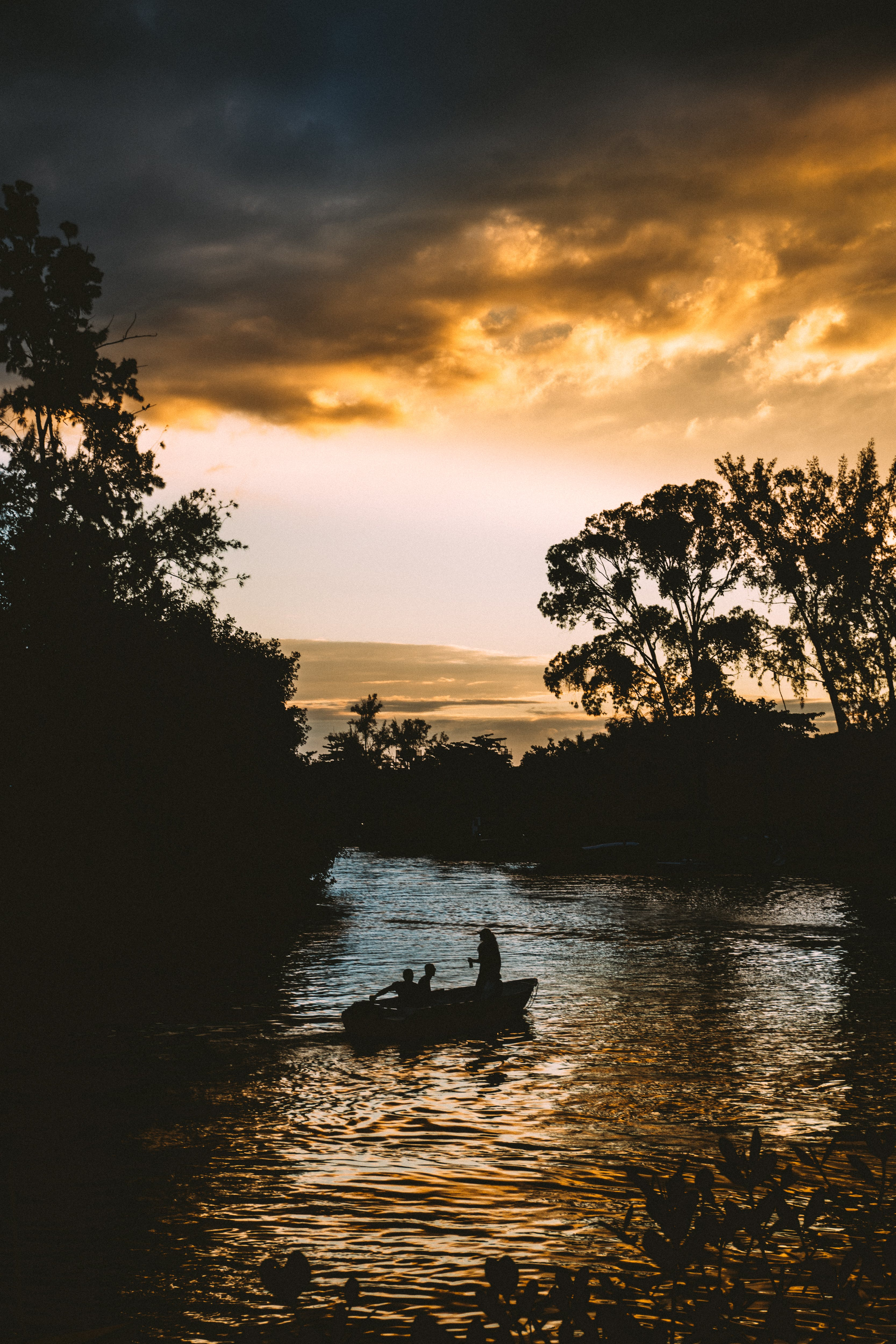 Silhouette of Persons on Boat Near Trees