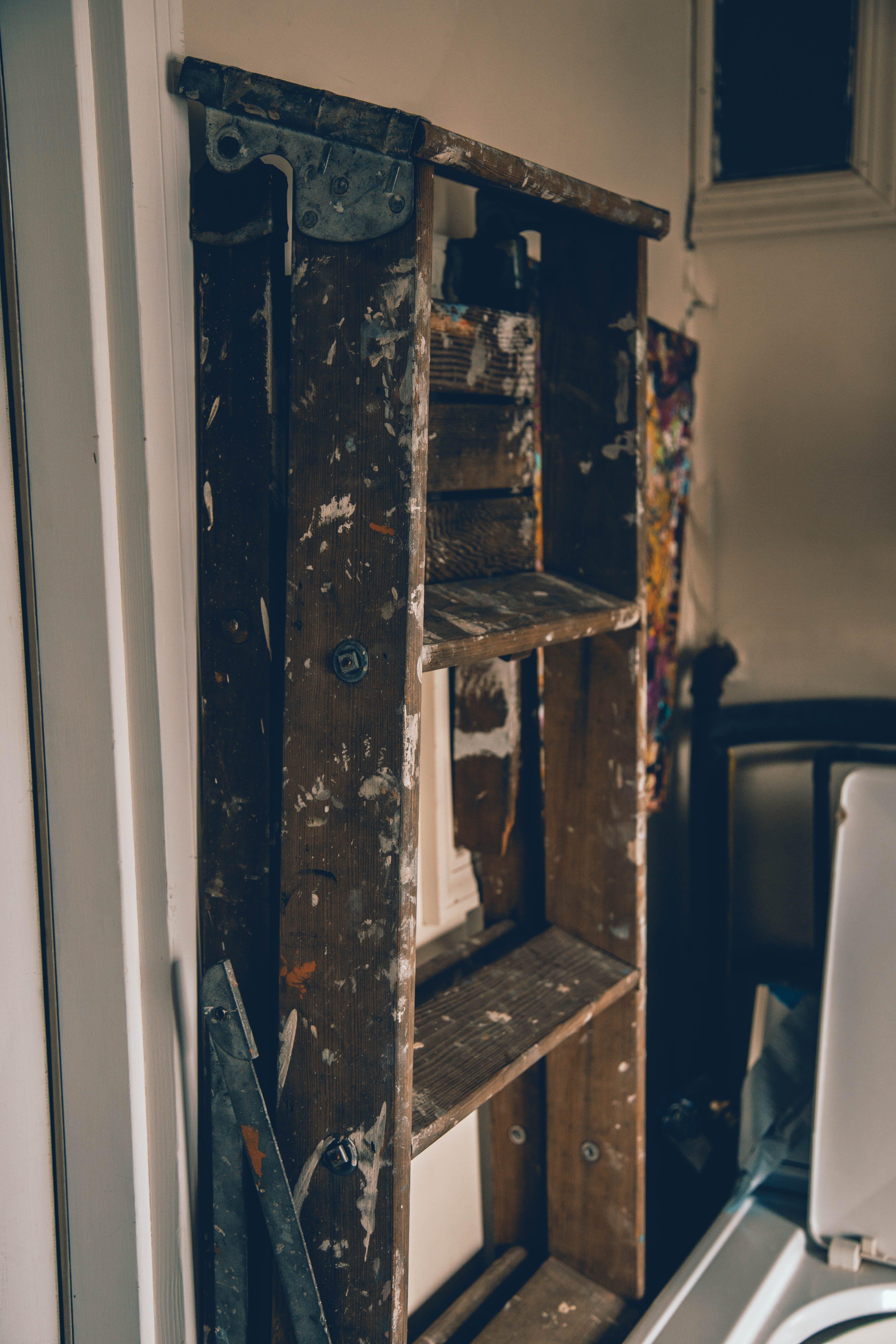 Foto stok gratis cat, cemar, dalam ruangan, garasi