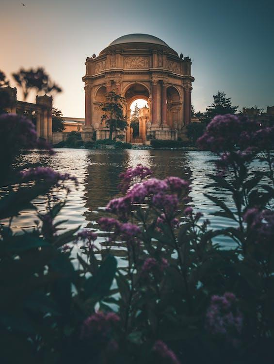 arkitektur, blommor, damm