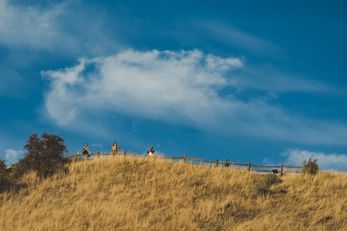 Four People Standing on Top of the Hill With Fence